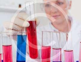 Chromatography Handling